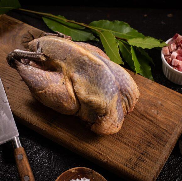 wild pheasant meat